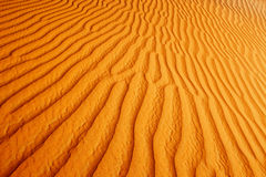 Rolling sand dunes of the Arabian desert Stock Photography