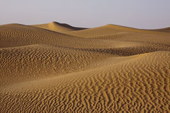 Rolling Sand Dunes Stock Photography