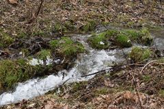 Rolling Streams of Wv after winter run off. The streams, that generally can almost be dry in mid summer, will flow with the winter and spring water run off from stock photo