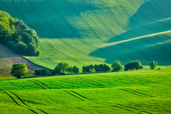 Rolling summer landscape of Moravia Stock Photos