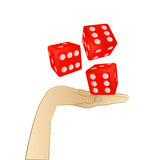 Rolling three dice on human palm  Stock Photos