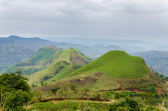 Rolling vruchtbare heuvels met gebieden en gewassen op Ring Road van Kameroen, Afrika Royalty-vrije Stock Foto