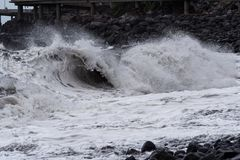 Rolling wave on stone coastline at storm. Portuguese island of Madeira stock photos