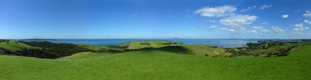 Rollings hills in New Zealand. Panoramic view over rolling hills in Shakespear Regional Park near Auckland Royalty Free Stock Photo