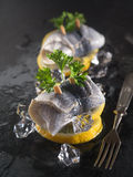 Rollmop herring on lemon slices and ice cubes Stock Photos