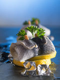 Rollmop herring on lemon slices and ice cubes Royalty Free Stock Photography