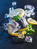 Rollmop herring on lemon slices and ice cubes Royalty Free Stock Image