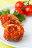 Rollmop in tomato sauce Royalty Free Stock Image