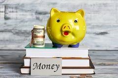 Rollo de dólares y del moneybox foto de archivo