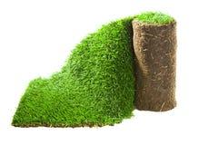 Rollo de la alfombra de la hierba fotografía de archivo libre de regalías