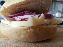 Rollo de la cebolla roja y del queso cheddar Foto de archivo
