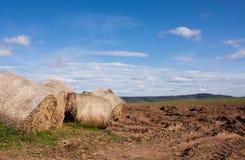 Rollo de la hierba Foto de archivo