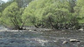 Rollo en el río rápido metrajes