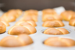 Rollos de la cocina Foto de archivo libre de regalías