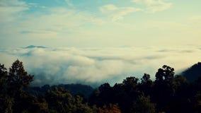Rollos de la niebla a través del valle de gran Smokey Mountains en Carolina del Norte metrajes