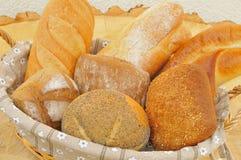 Rollos de pan clasificados Foto de archivo libre de regalías