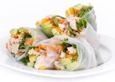 Rollos de primavera del pollo y de las verduras Imagen de archivo libre de regalías