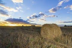Rolls сена в поле на заходе солнца Стоковое фото RF
