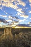 Rolls сена в поле на заходе солнца Стоковая Фотография