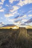 Rolls сена в поле на заходе солнца Стоковая Фотография RF