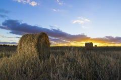Rolls сена в поле на заходе солнца Стоковые Изображения RF