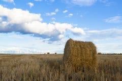 Rolls сена в поле Стоковое фото RF