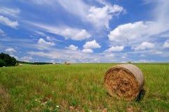 Rolls соломы на поле стоковая фотография rf