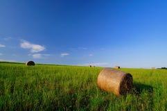 Rolls соломы на поле стоковое изображение