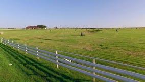 Rolls av hö på ett fält