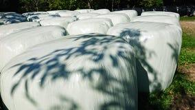 Rolls av torkat gräs royaltyfri foto