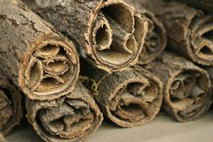 Rolls of bark. With medicinal qualities in a South Korean palace shop Royalty Free Stock Image