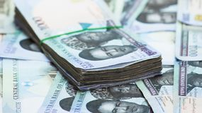 Nigeria local currency N1000 naira notes in a bundle. Rolls and Bundles of Naira Cash local currencies stock photo