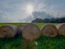 Rolls da palha em um prado verde Imagens de Stock Royalty Free