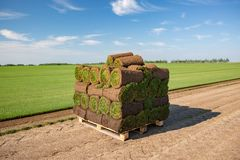 Rolls de gazon empilée en préparation prêt à être étendu dans la pelouse moulue image stock