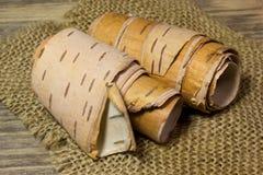 Rolls de la corteza de abedul Fotografía de archivo
