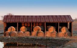Rolls de las balas de heno en granero del heno del metal Imagen de archivo