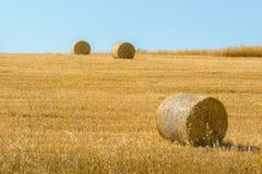 Rolls del heno en el campo del trigo Fotografía de archivo libre de regalías