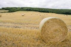 Rolls del heno en el campo en Willerby, Scarborough, Yorksh del norte imagen de archivo libre de regalías