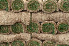 Rolls der Grasscholle Stockbilder