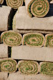Rolls der Grasscholle (Hintergrund) stockfoto
