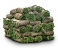 Rolls des Grases Stockbild