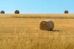 Rolls des Heus auf dem Gebiet des Weizens Stockfoto