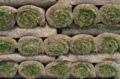 Rolls des Rasens für Rasen Lizenzfreie Stockfotografie