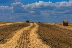Rolls des Strohs auf dem geernteten Feld stockfotografie