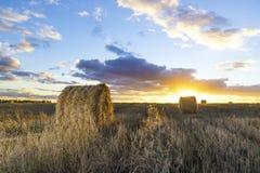 Rolls di fieno nel campo al tramonto Immagine Stock