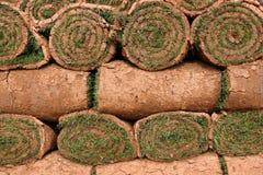 Rolls di tappeto erboso Fotografia Stock