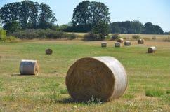 Rolls do feno, vale de Willamette, Oregon Fotos de Stock Royalty Free