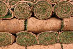 Rolls do relvado foto de stock