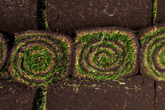 Rolls of fresh grass turf Royalty Free Stock Images