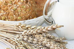 Rolls and grains with cup of milk Royalty Free Stock Images
